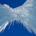 Ice Castle Heaven  by Nicole  Markmann Nelson