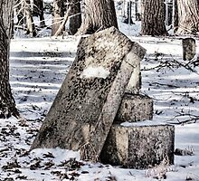 Silent Graves by PineSinger
