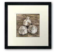 Three Bulbs of Garlic Framed Print