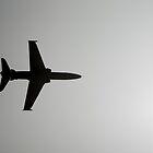 RAAF Hawk by Peter Whitworth