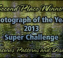 NPAD Banner - Photo of Year 2nd Place by Celeste Mookherjee