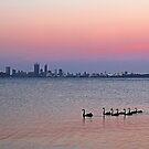 Swan River Perth Western Australia  by EOS20