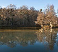 Lake at Wakehurst place by janwyl