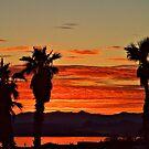 Lake Havasu Evening by tvlgoddess