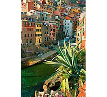 Italy. Cinque Terre - Canal side close up Photographic Print