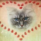 Valentine Cat by Carol Bleasdale