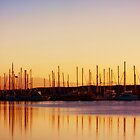 Sunset in Moss Landing Harbor by Polly Peacock