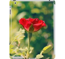 I give to my love one red rose iPad Case/Skin
