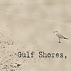 Beach Bird at Gulf Shores by sacredmoments
