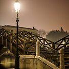 Through the mist by Jai Honeybrook
