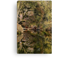 Refections on a Slough Canvas Print