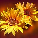 Golden Sunflowers'... by Valerie Anne Kelly