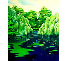 Green pond Photographic Print