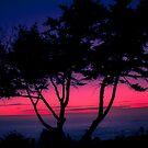 Harris beach sunset by Jeannie Peters