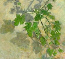 Grape vine with leaves and clusters of grapes by PhotoStock-Isra