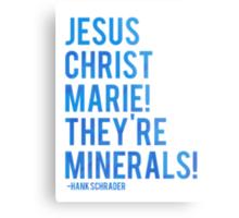 Jesus Christ Marie! They're minerals! Metal Print