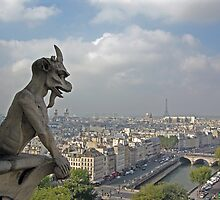 Gargoyle surveying Paris by shutterbug941
