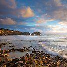 Golden Light- Mornington Peninsula  by Cameron B