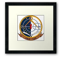 VAH - 123 Heavy Attack Squadron -Professionals Framed Print