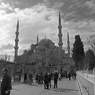 Istanbul by David Perrin