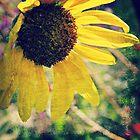 Sunflower 2 by ElleEmDee