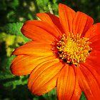 Garden Life 2 by ElleEmDee