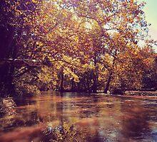 Early Autumn River by ElleEmDee
