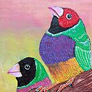 Pretty Gouldian Finches by Laura Barbosa