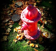 Fire Hydrant in Fall by artbybutterfly