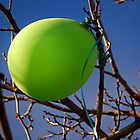 GREEN BALLOON by Sandra  Aguirre