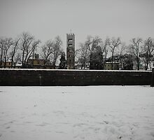 snowy walls, 2009 Lucca 1 by elphaba