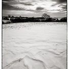 Ice Watch BW by Andy Freer