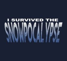 Snowpocalypse by A-Mac