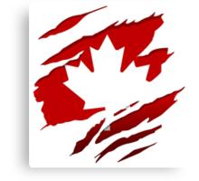 Canada Red Leaf Canvas Print