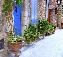 The Blue Doors Of A Provencal Village by Fara