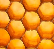 Golden Honeycomb by Dan Dexter