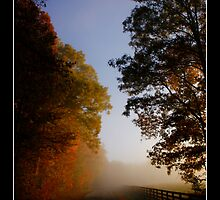 Foggy Back Roads by Twisted-Lyme