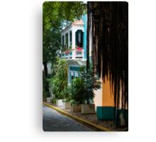 San Juan, Puerto Rico - Gorgeous Caribbean Colors and Flora Canvas Print
