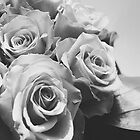 Roses black & white by SassySnark