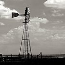 American West Windmill by njordphoto