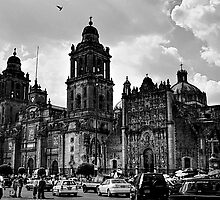 Zócalo Cathedral by njordphoto