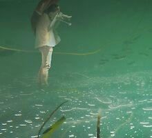 Submerged photographer in waterland by Steve Björklund