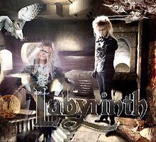LABYRINTH by STUDIO 88 TARANAKI NZ