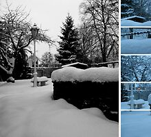 Winter Garden Photo Collage by stine1