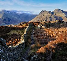 Lingmoor And The Langdales by FyldePhotos