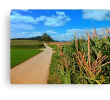 Besides the cornfields | landscape photography Canvas Print