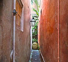 Just a Narrow NOLA Alley by designingjudy
