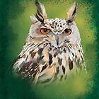 Eagle Owl by Carl Conway