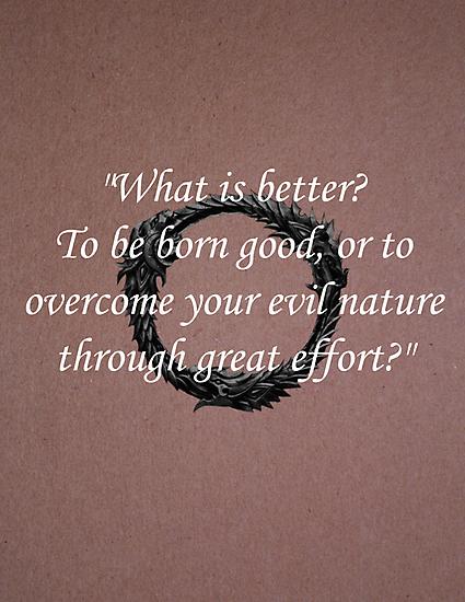 What is Better? - Elder Scrolls Quote by GameBantz