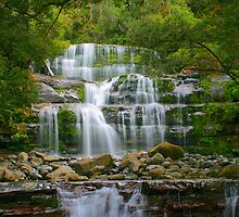 Liffey Falls portrait by Michael Matthews